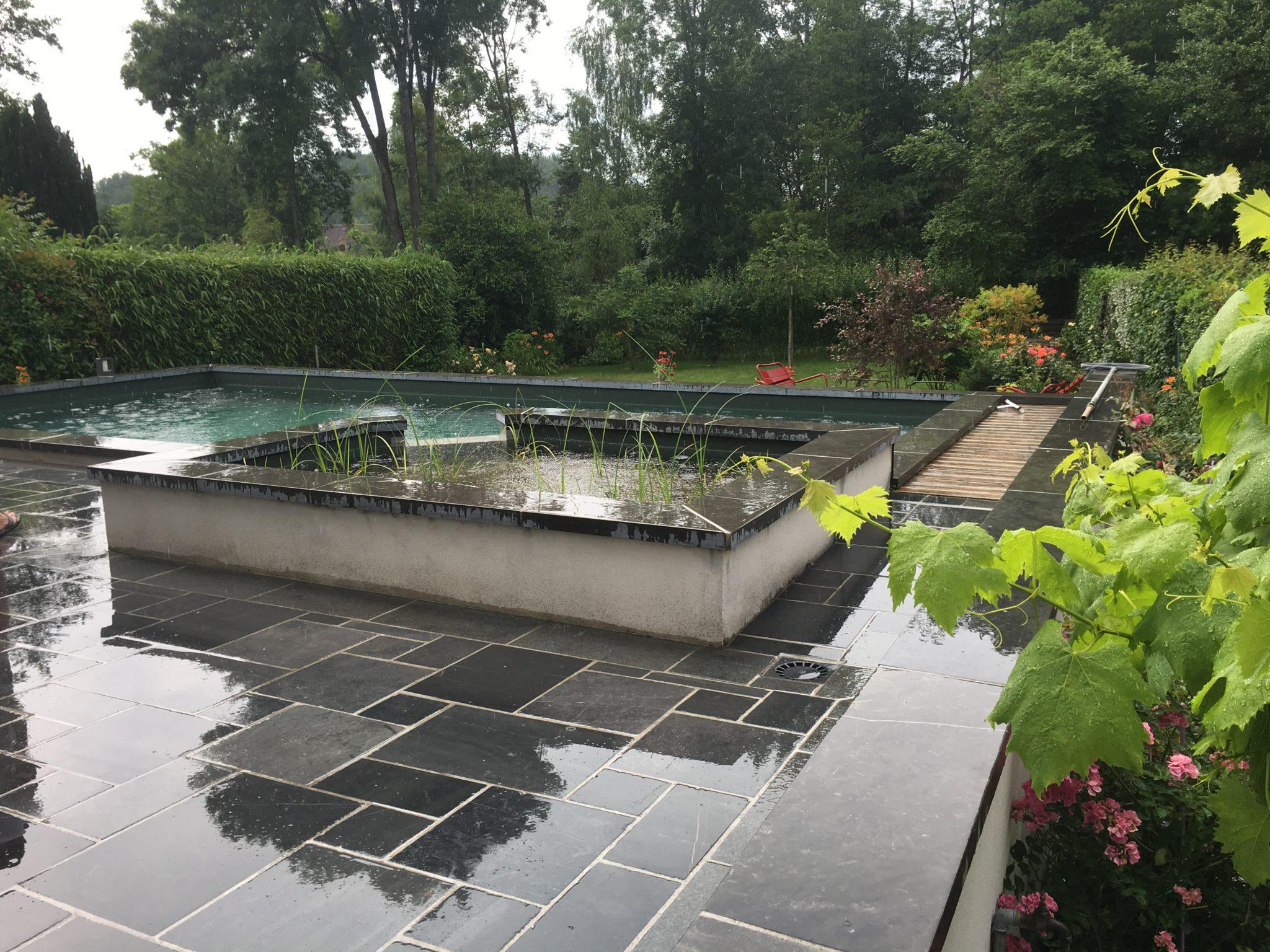 Aménagement D'une Piscine Naturelle | Le Jardin By Bourdin tout Piscine De Checy
