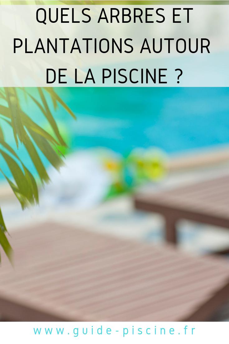 Arbres Et Pelouse Autour De La Piscine | Plantes Autour De ... dedans Piscine Impots