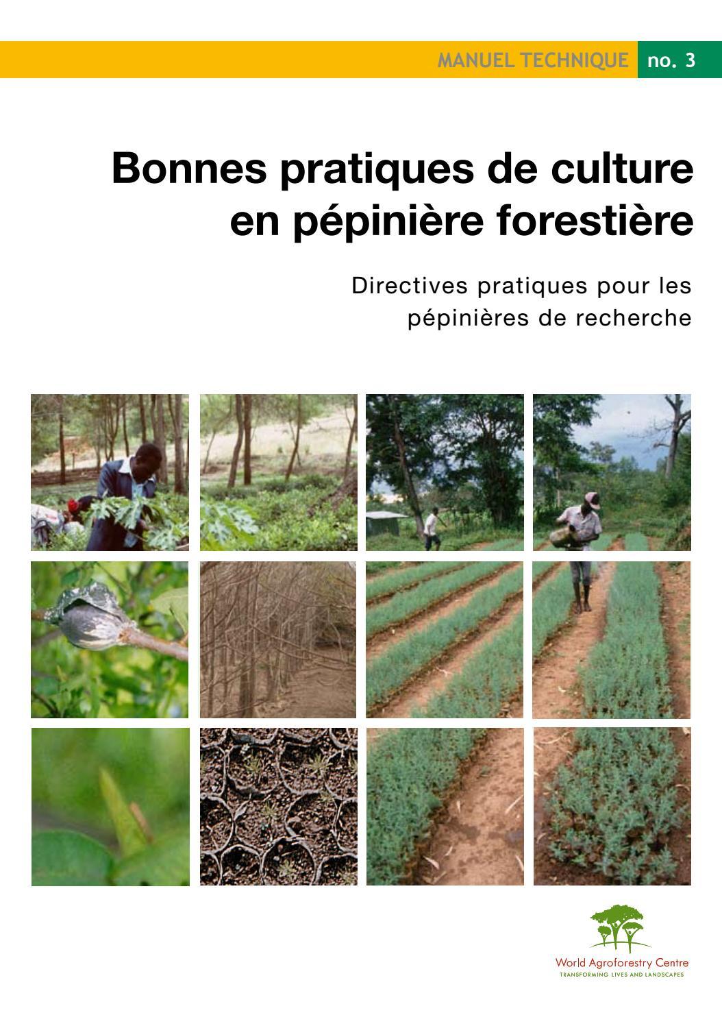 Bonnes Pratiques De Culture En Pépinière Forestière ... serapportantà Piscine Pepiniere