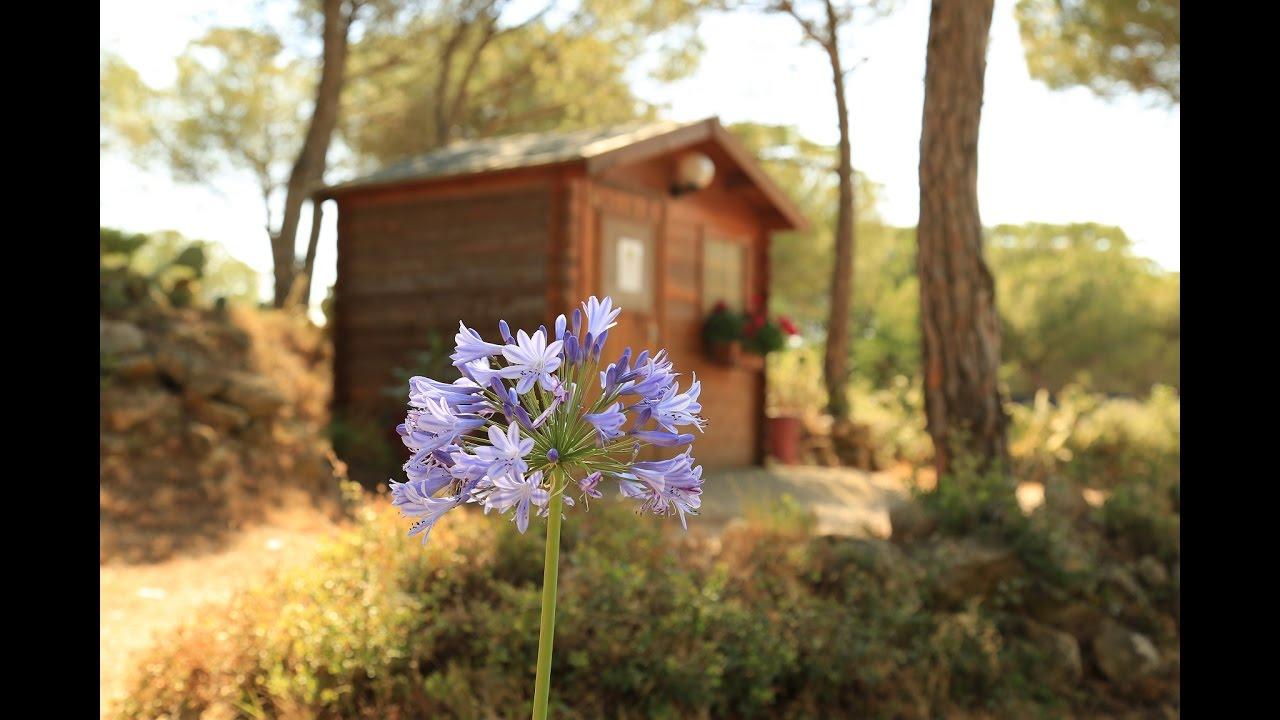 Camping En Pays Cathare Avec Piscine, Calme & Nature, Proche Narbonne &  Gruissan, Aude (11). encequiconcerne Camping Aude Avec Piscine