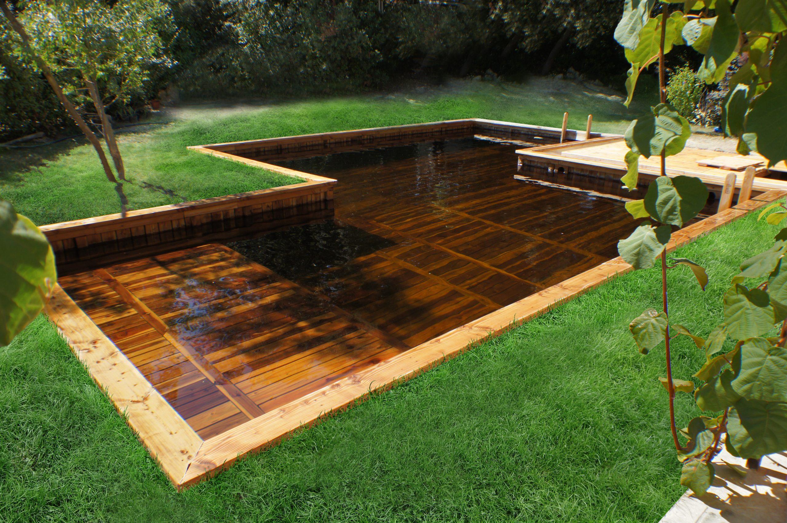 Constructeur De Piscine Naturelle Design Bois Filtration ... à Piscine En Teck