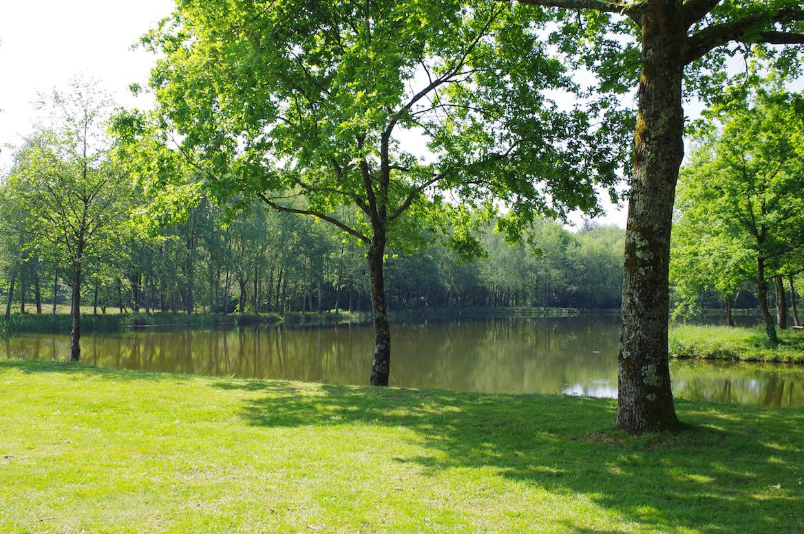 Erdre Canal Forêt : Picnic Areas encequiconcerne Piscine Treillieres
