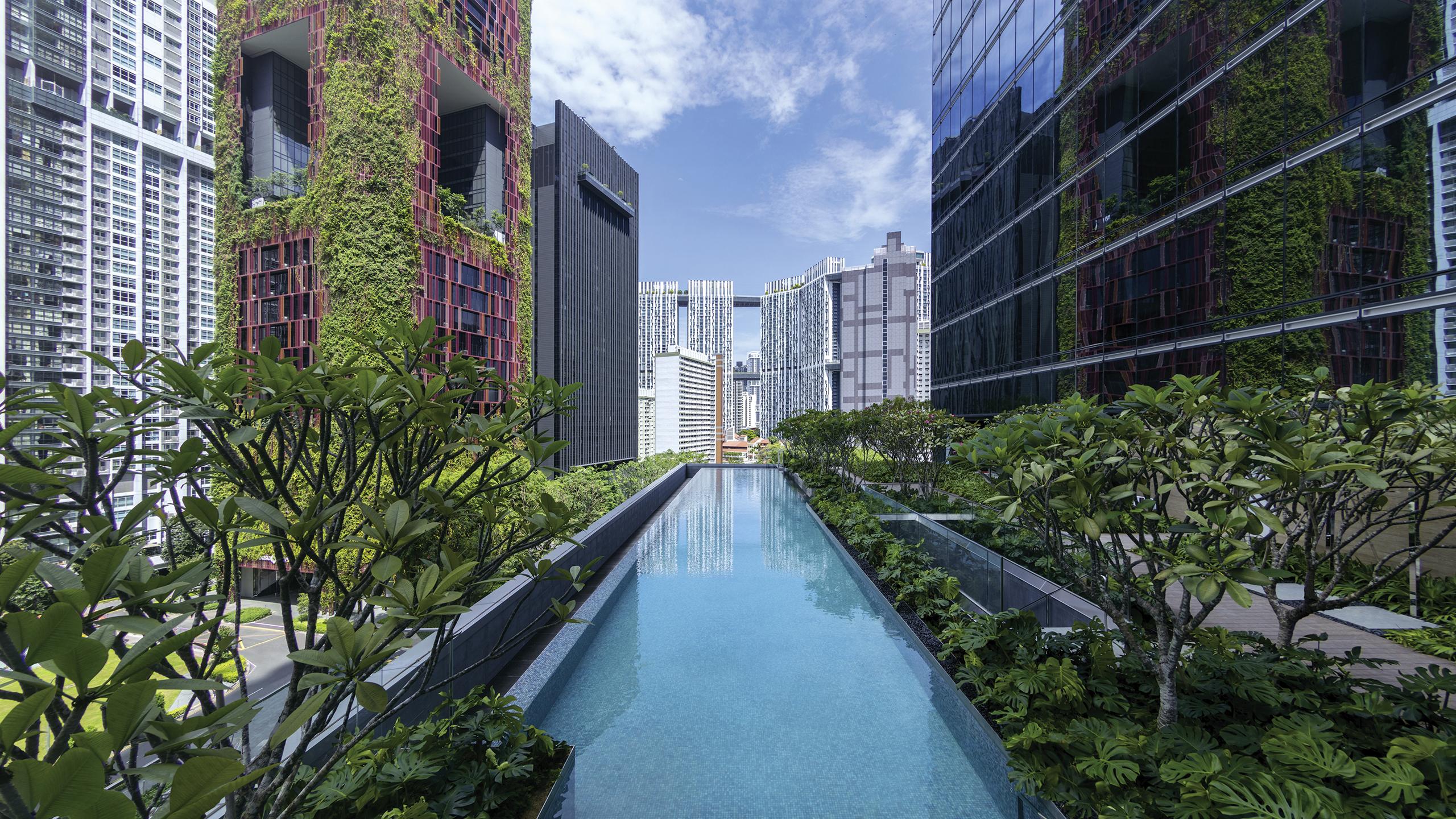 Hotel De Luxe Singapour – Sofitel Singapore City Centre dedans Piscine Singapour