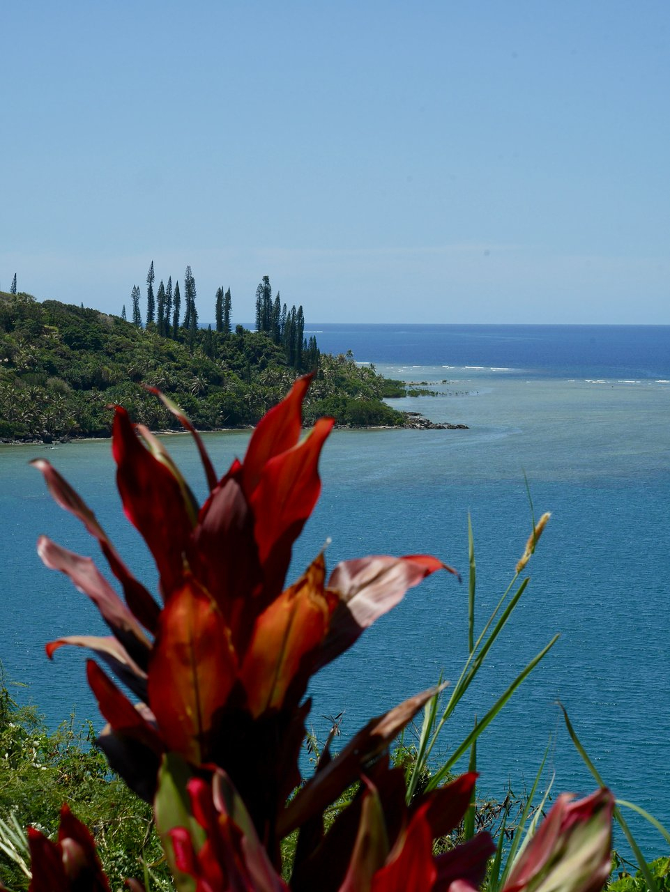 Hotel Malabou Beach - Prices & Reviews (New Caledonia/grand ... serapportantà Babou Piscine
