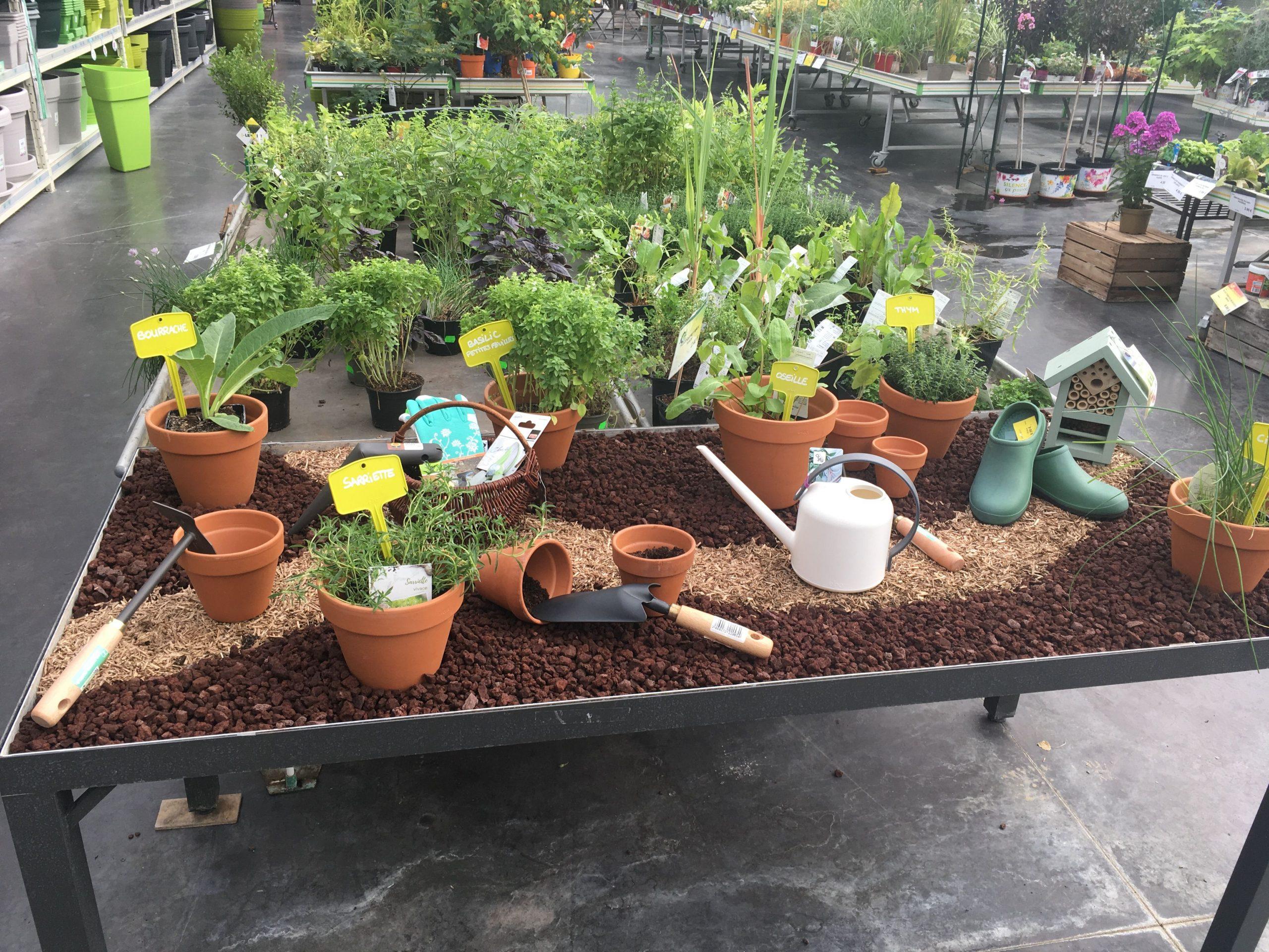 Idée De Mise En Situation Pour La Vente En Jardinerie ... avec Piscine Sarralbe