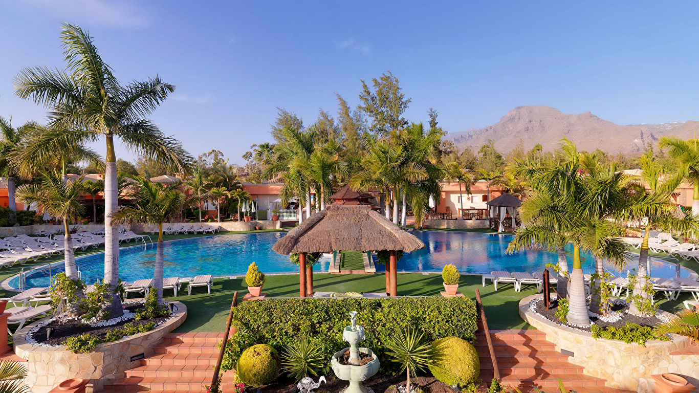 Immagine Isole Canarie Spagna Resort Piscine Tenerife 1366X768 concernant Palme Piscine