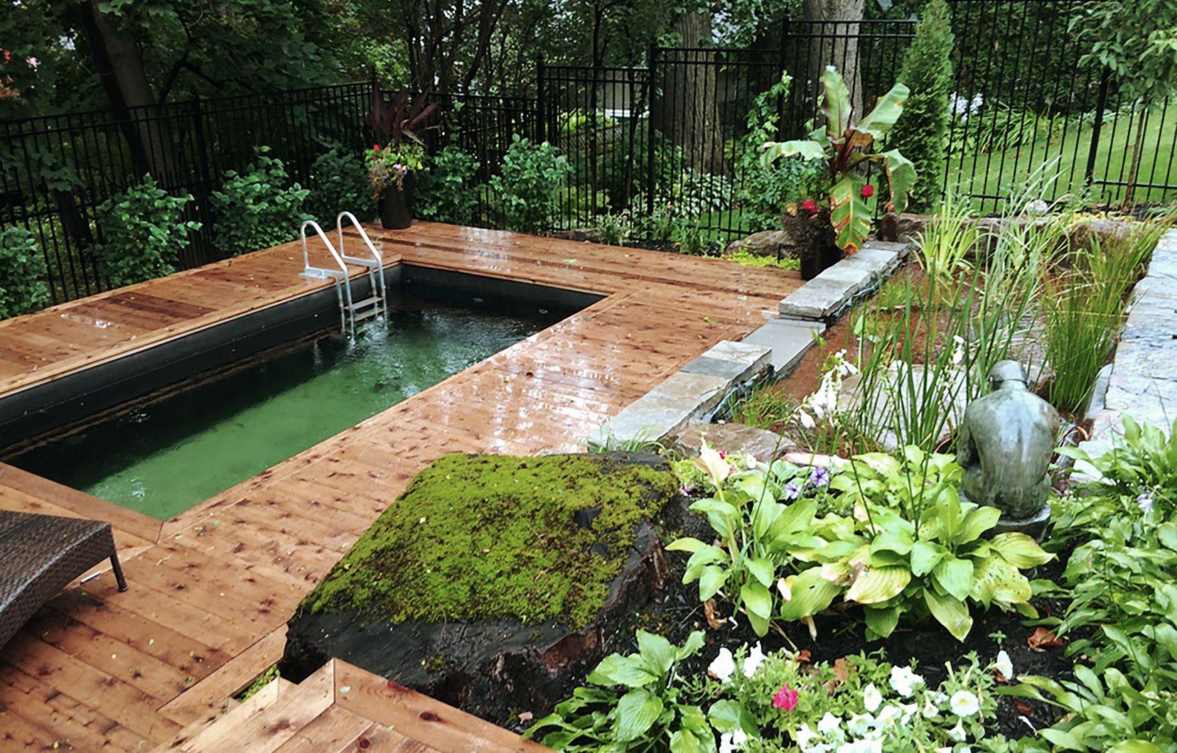 Jardin: La Piscine Naturelle Et L'étang De Baignade | Le Devoir serapportantà Piscine Naturelle En Kit