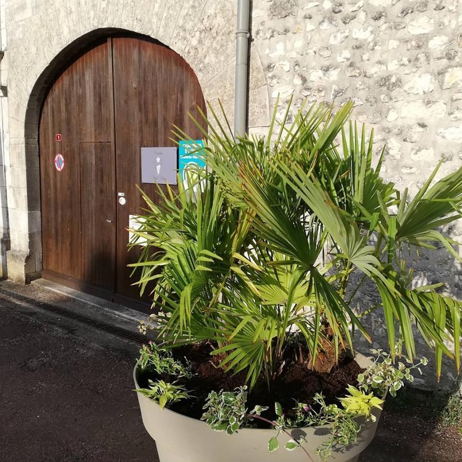Konukevi Le Domaine Du Haut Preau (Fransa Saint-Palais-De ... à Piscine Lormont