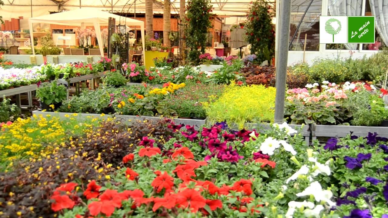 La Main Verte – Pépinière / Garden Center (Maroc)   La Main ... à Piscine Pepiniere