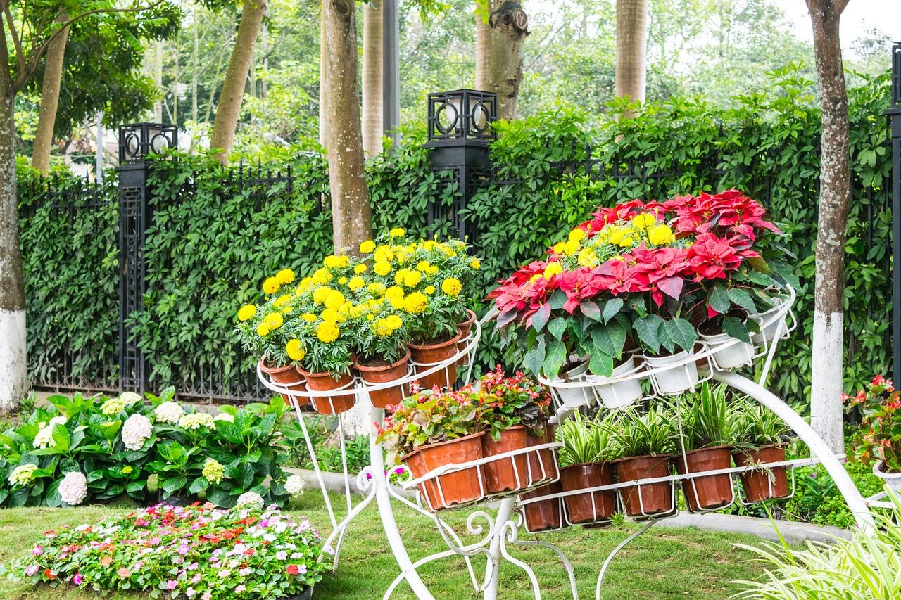 La Pépinière Et La Jardinerie | Guide Piscines Et Jardins destiné Piscine Pepiniere
