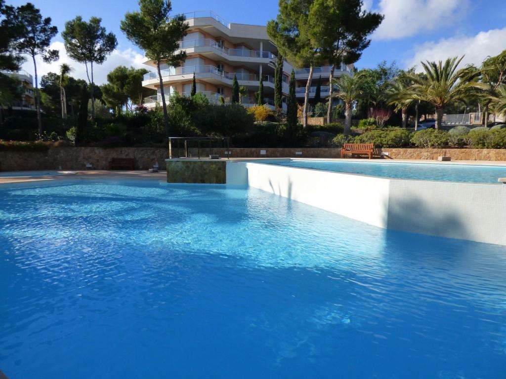 Luxury Apartment To Rent In Sol De Mallorca | The Agency ... intérieur Cash Piscine Langon