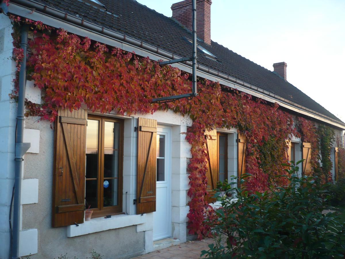 Oda Ve Kahvaltı Chambres D'hôtes Anne-Marie (Fransa ... dedans Piscine Chatillon Sur Indre
