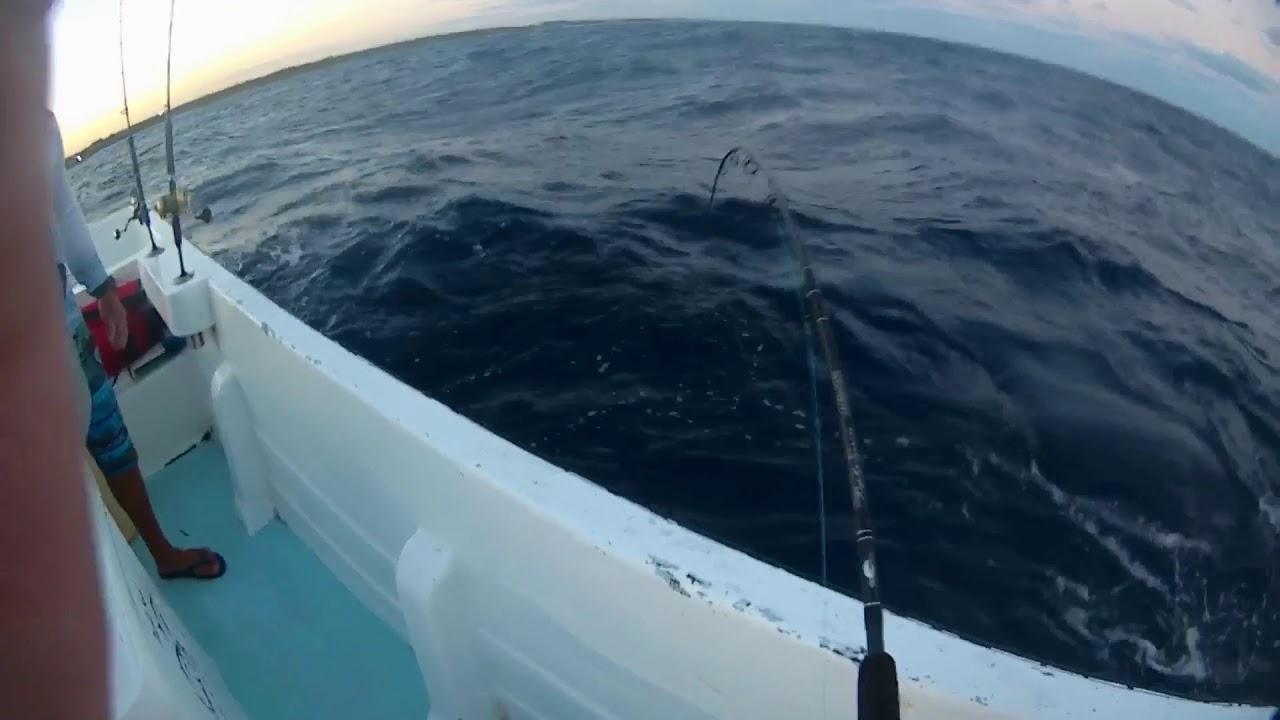Pêche En Mer Au Thon Noir - serapportantà Piscine Cabesto