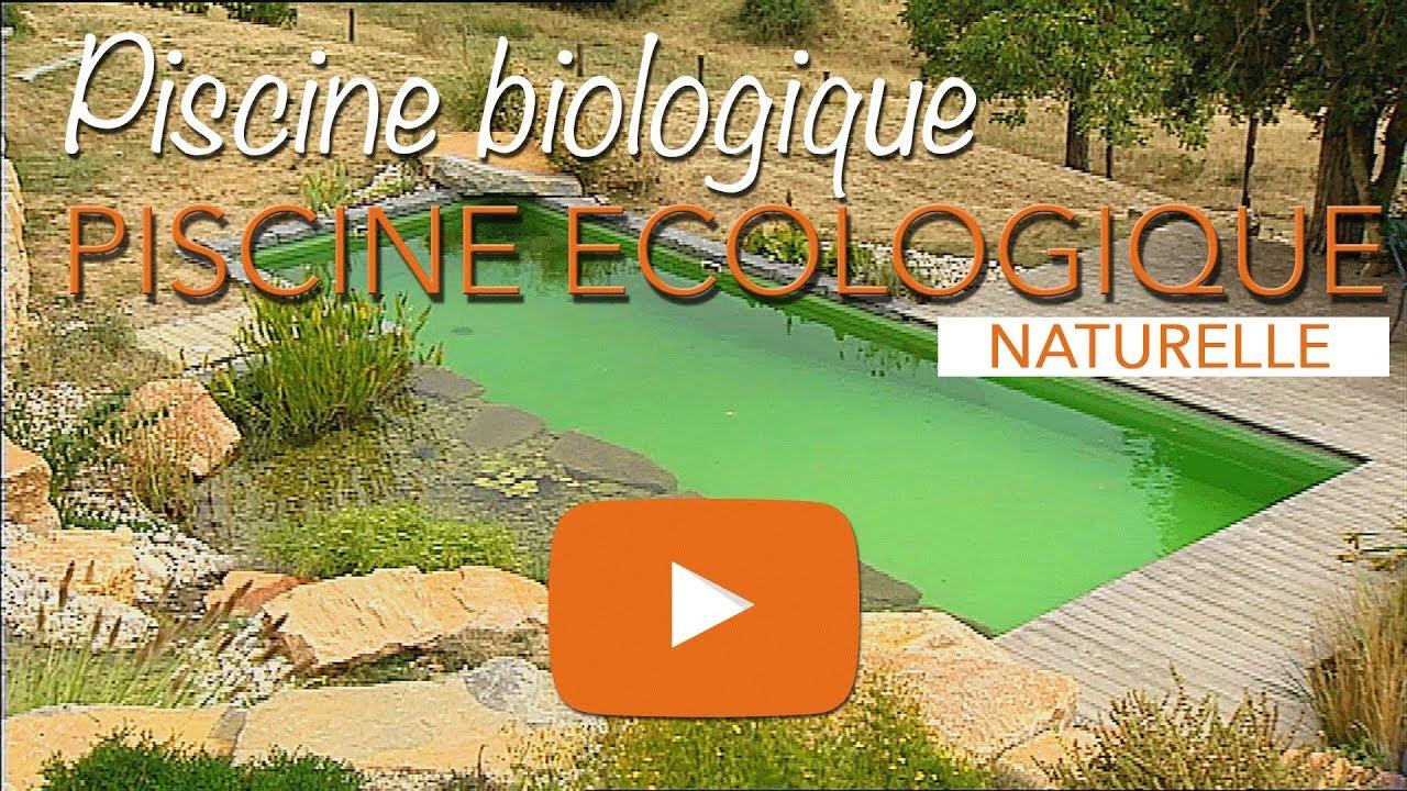 Piscine Écologique, Biologique Ou Baignade Naturelle. concernant Piscine Naturelle En Kit