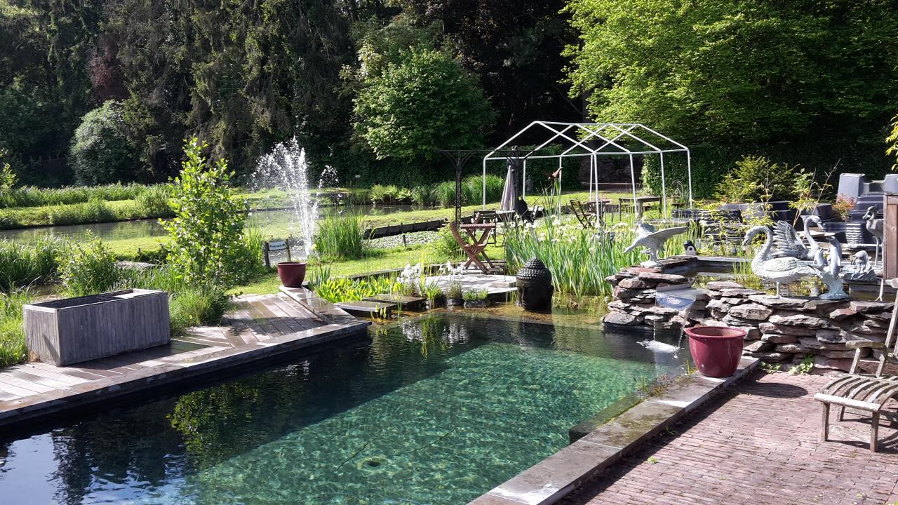 Piscine Naturelle - Aquatic Design Concept Et Garden dedans Piscine Naturelle En Kit