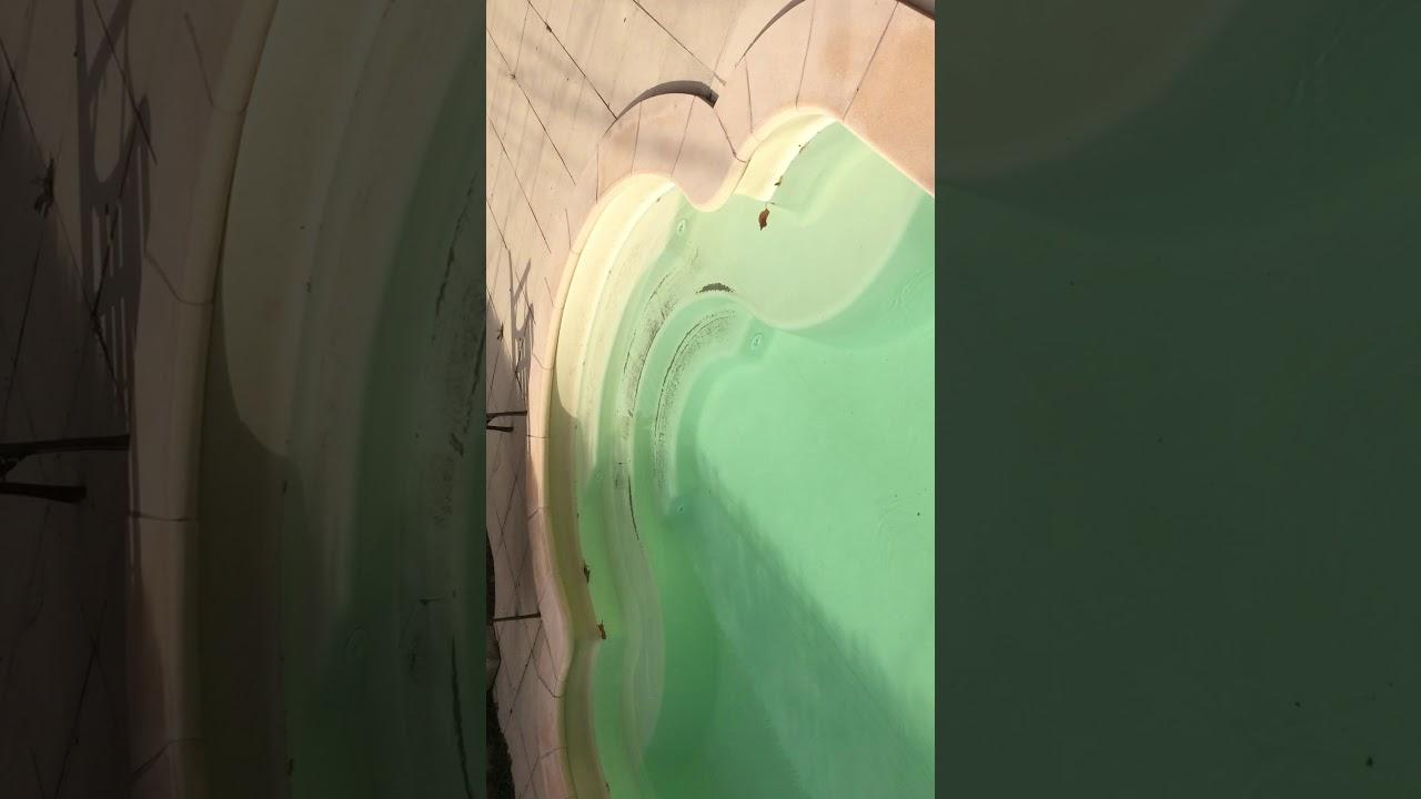 Piscine Verte, Brome, Problème Ph Trop Bas Vidéo 2 tout Ph Piscine Trop Bas