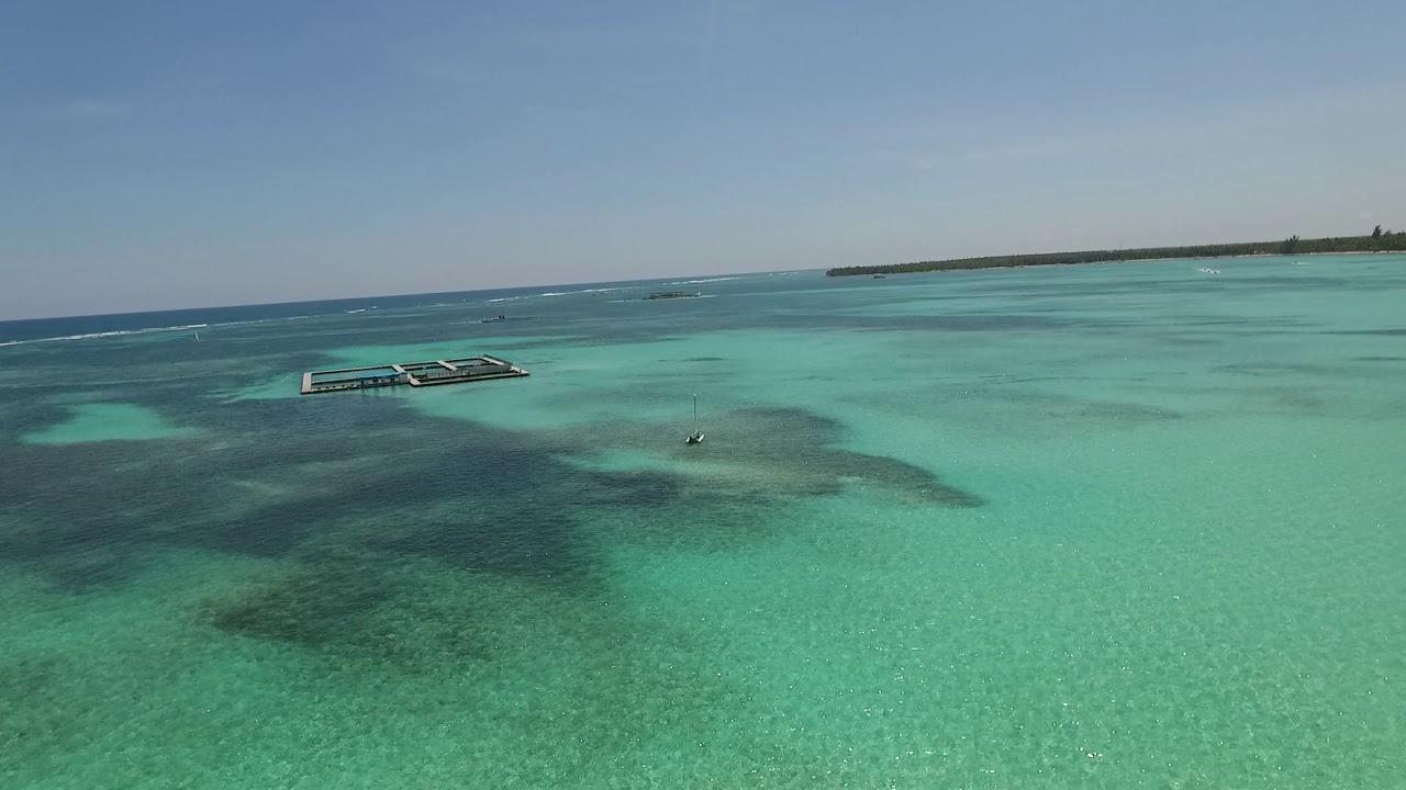 Plage + Piscine Hotel Bavaro Beach Punta Cana - à Piscine Plage Caoutchouc