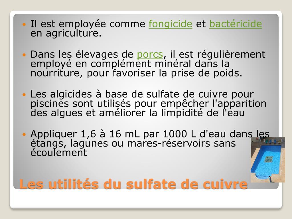Ppt - Sulfate De Cuivre Powerpoint Presentation, Free ... intérieur Sulfate De Cuivre Pour Piscine
