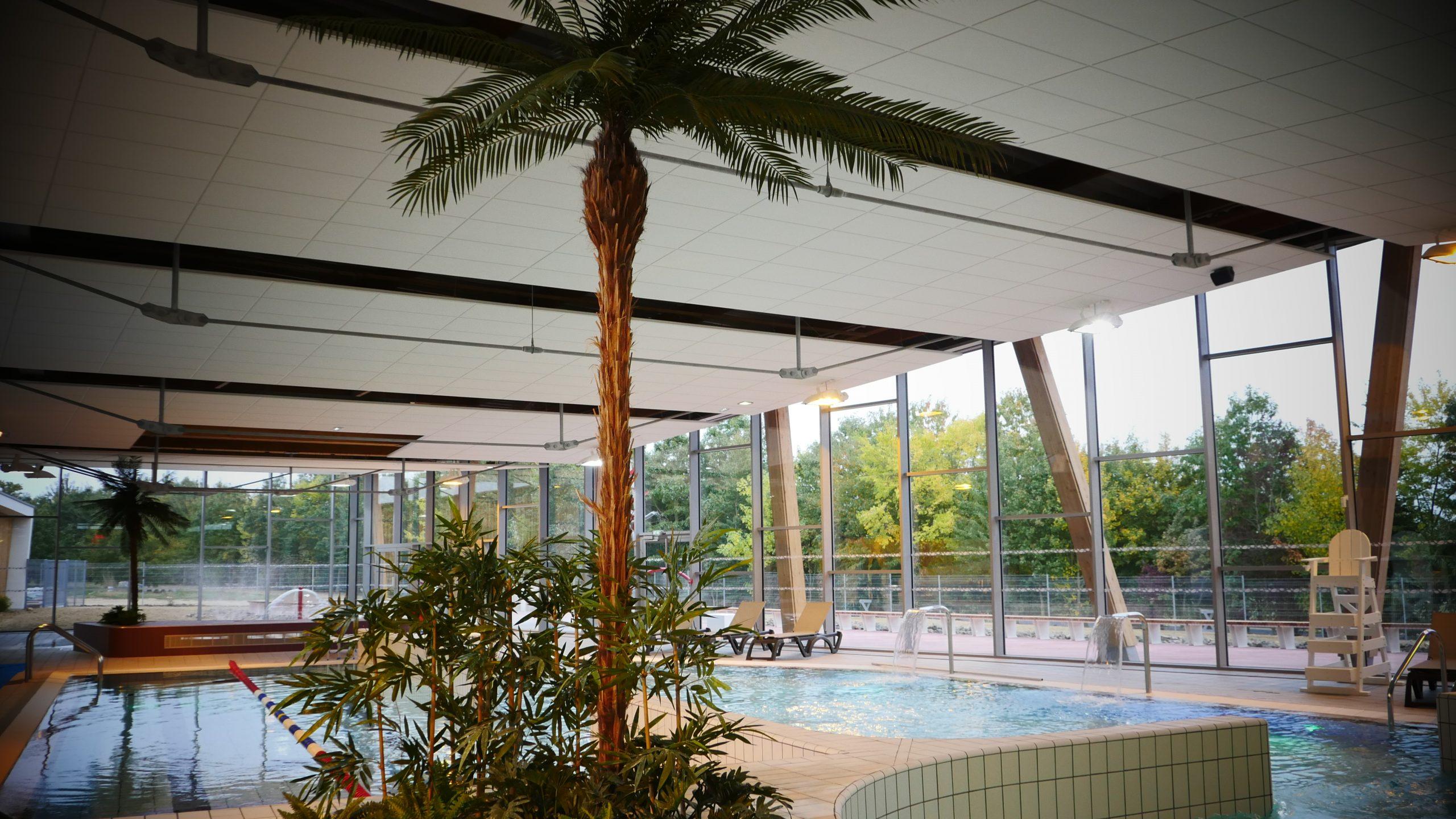 Programmation Et Amo Du Centre Aquatique De Derval (44 ... pour Piscine Derval