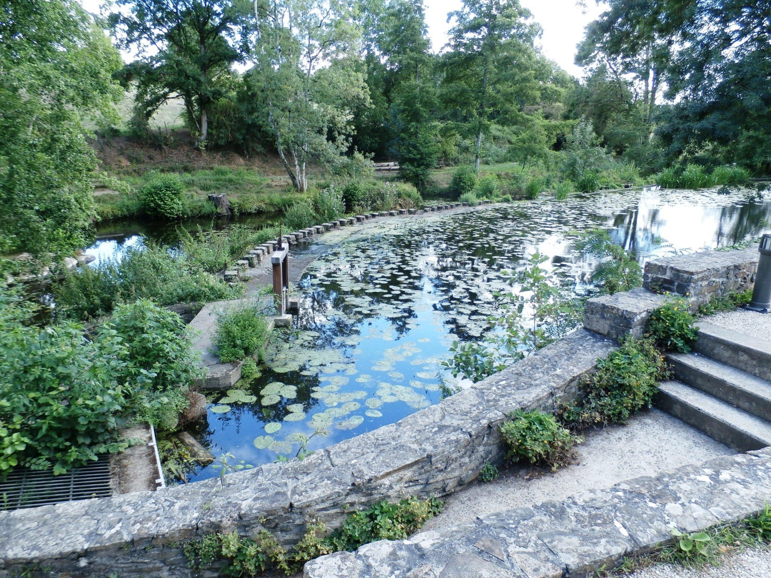 Residence Les Pinserons - Condominium Reviews (Saint-Georges ... concernant Piscine Boufféré