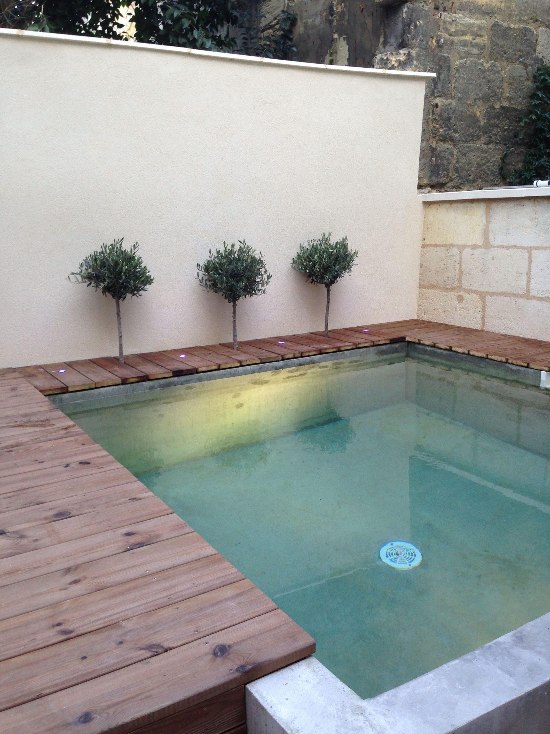 Small Pool 3X3 | Small Backyard Pools, Backyard Pool, Small Pool destiné Piscine 3X3