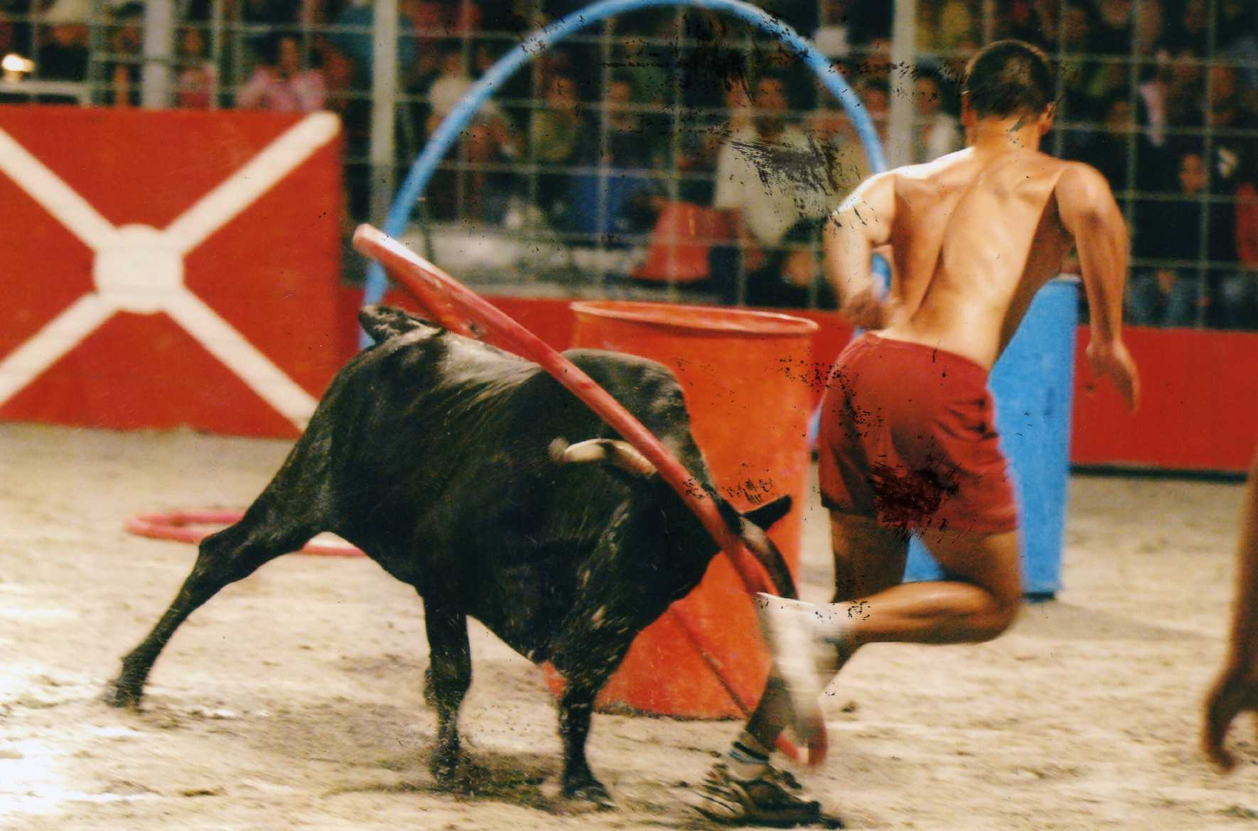 Spectacle Toro Piscine Labat À Messanges Le 09/08/2019 ... serapportantà Toro Piscine Labat