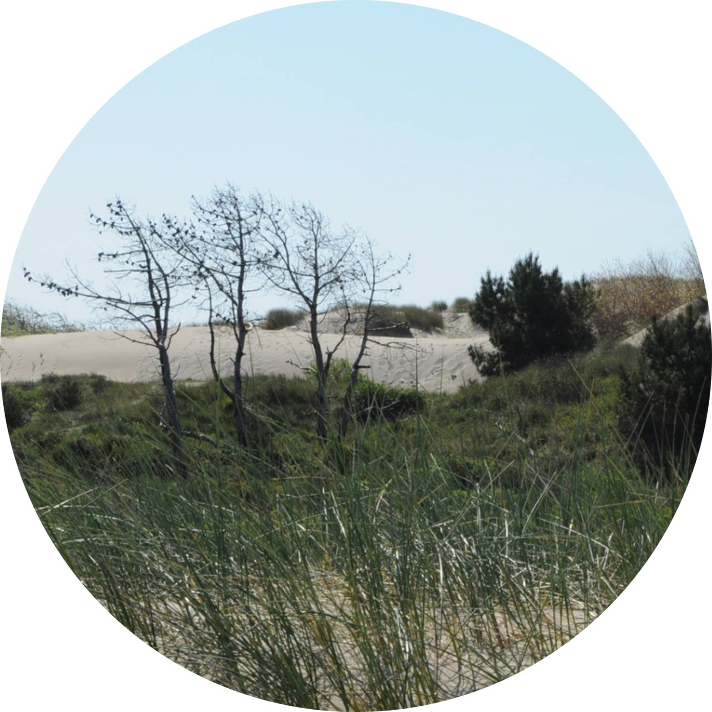 Une Balade En Baie De Somme %ef%bf%bda Vous Tente - Un Petit ... à Camping Berck Avec Piscine