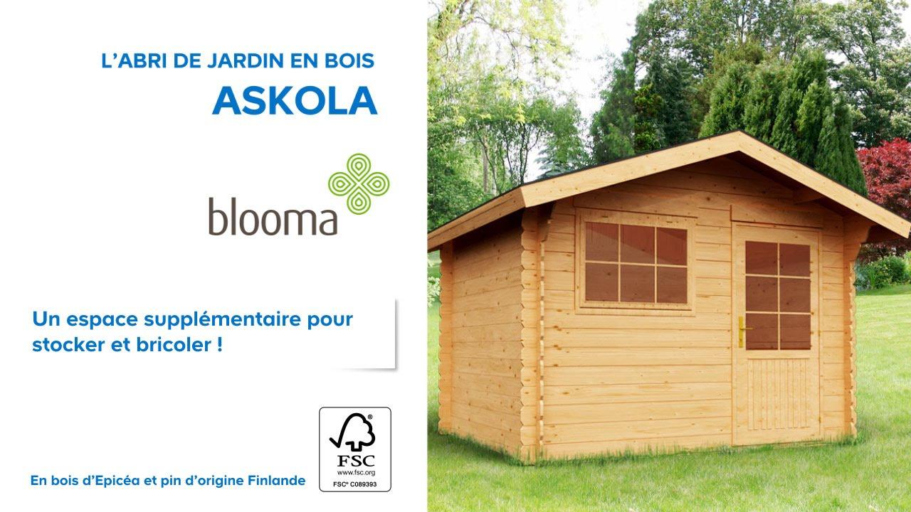 Abri De Jardin En Bois Askola Blooma (610707) Castorama encequiconcerne Abri Jardin 12M2