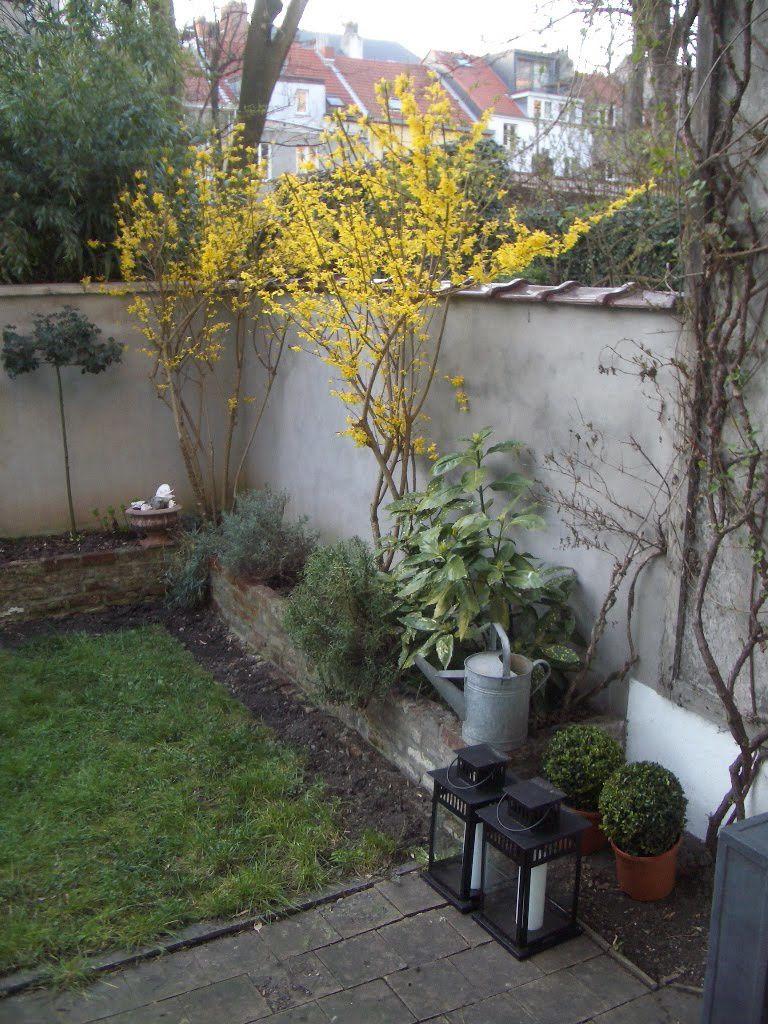 Amenager Un Petit Jardin - Le Blog De Adeline à Amanager Un Petit Jardin
