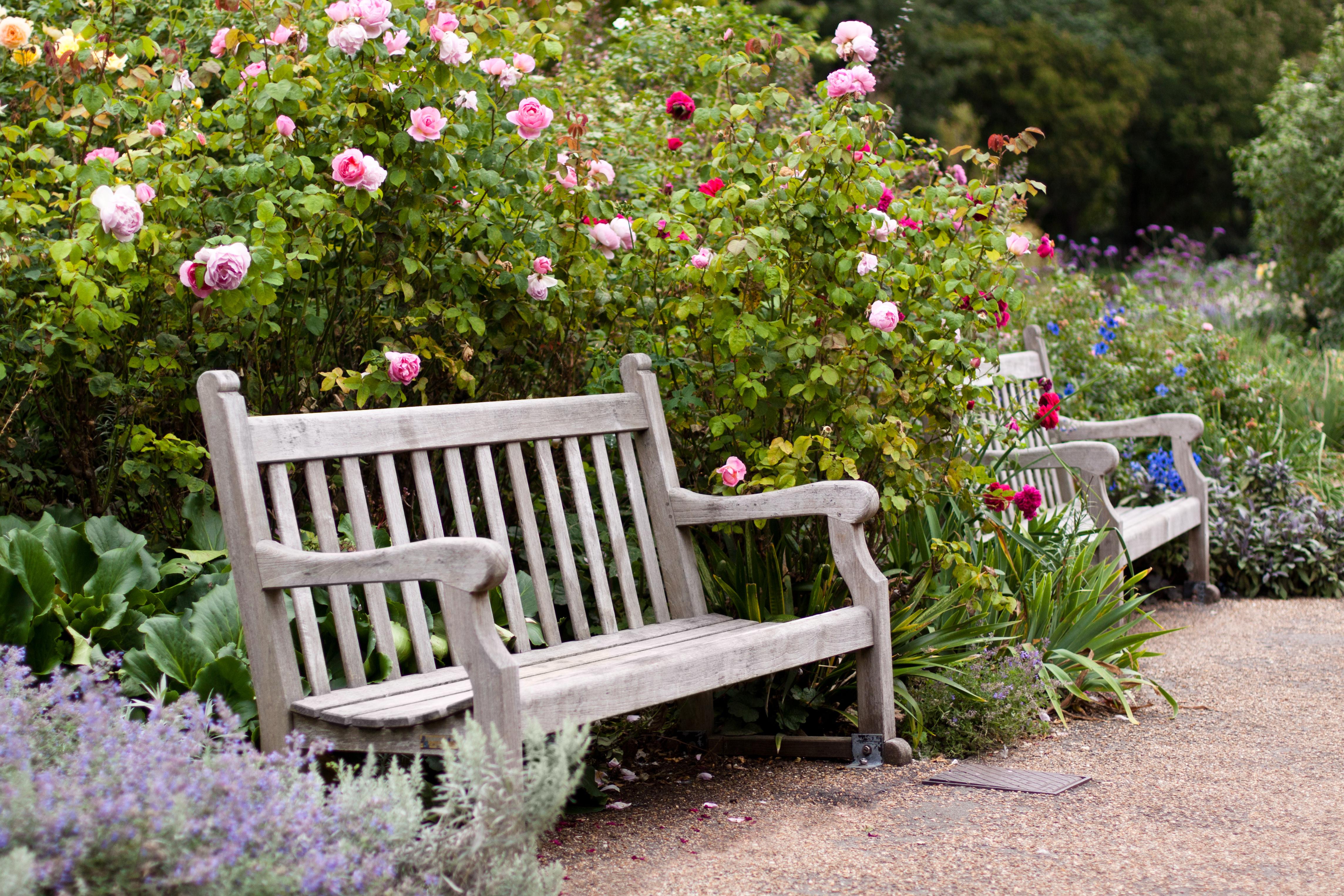 Aménager Un Petit Jardin : Tous Les Conseils Pour Réussir ... serapportantà Amanager Un Petit Jardin