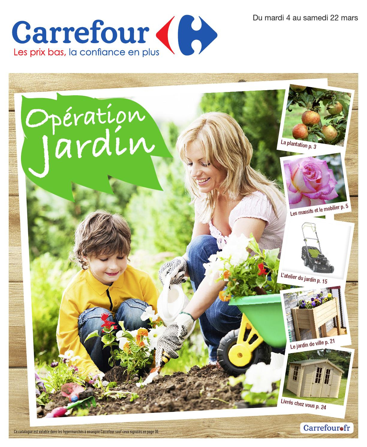Catalogue Carrefour - 4-22.03.2014 By Joe Monroe - Issuu intérieur Abris De Jardin Carrefour