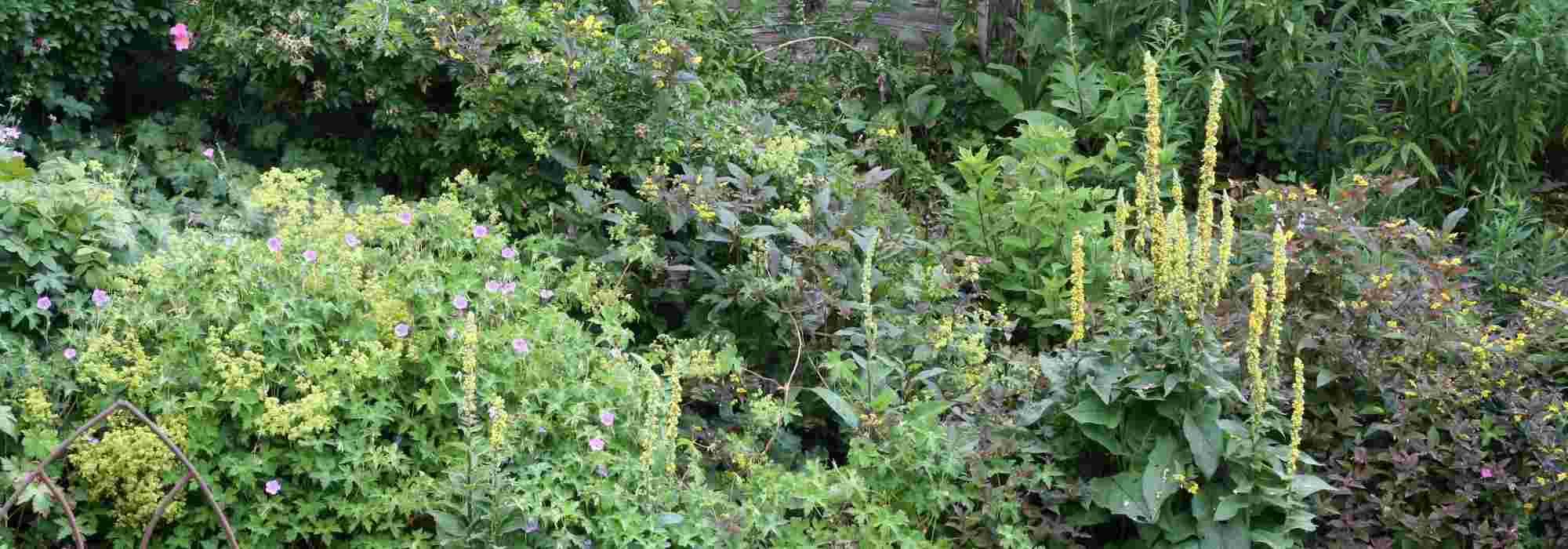 Comment Aménager Un Jardin En Pente ? Nos Conseils destiné Amanagement Jardin En Pente