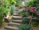 Escalier De Jardin - Aménagement D'escalier Extérieur ... à Amanagement Jardin En Pente