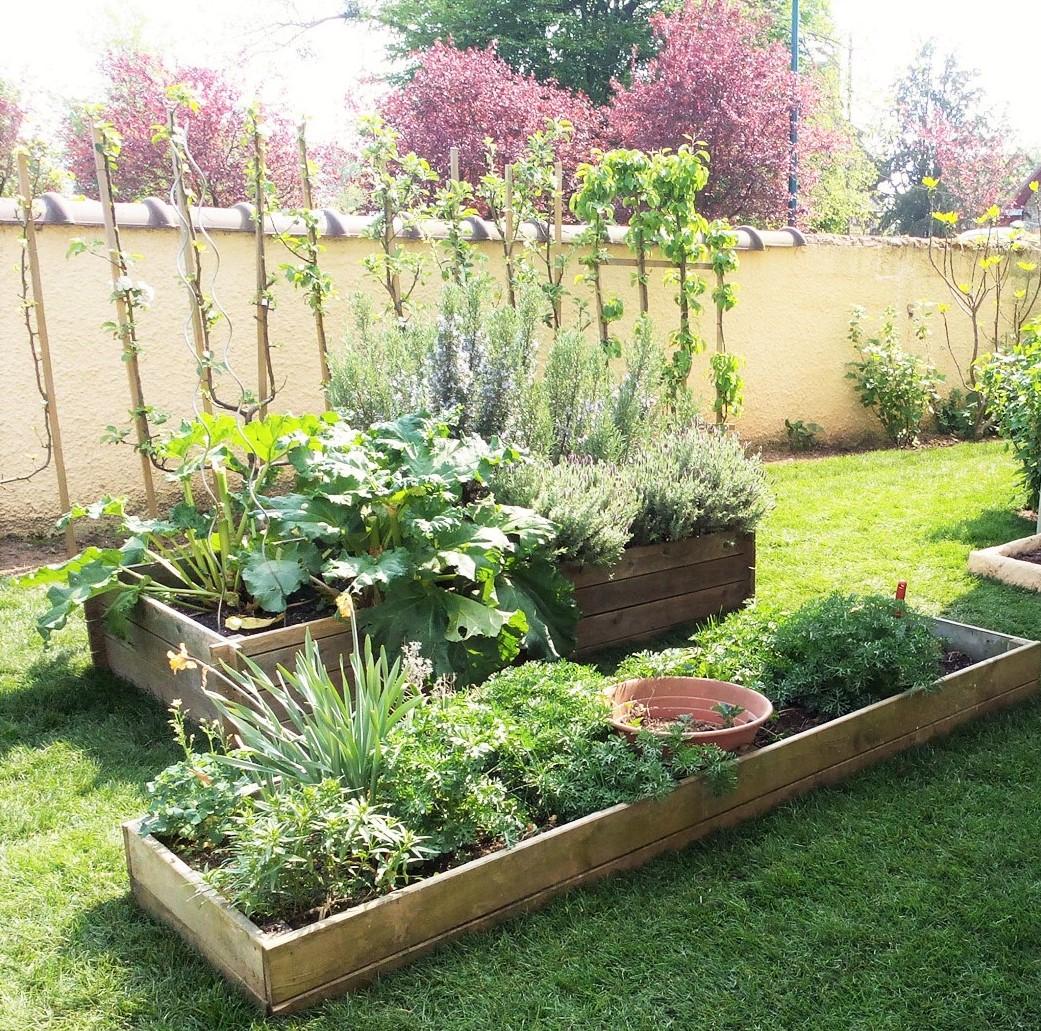 Faire Un Petit Potager Dans Un Jardin De Ville | 360M2.fr tout Petit Jardin Paysager