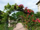 File:allée De Roses Jardin Des Plantes.jpg - Wikimedia Commons tout Allee De Jardin