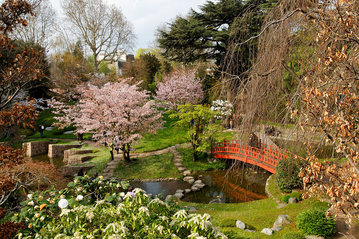 File:musée Albert Kahn - Jardin Japonais - Cerisiers Et ... serapportantà Modele De Jardin Japonais