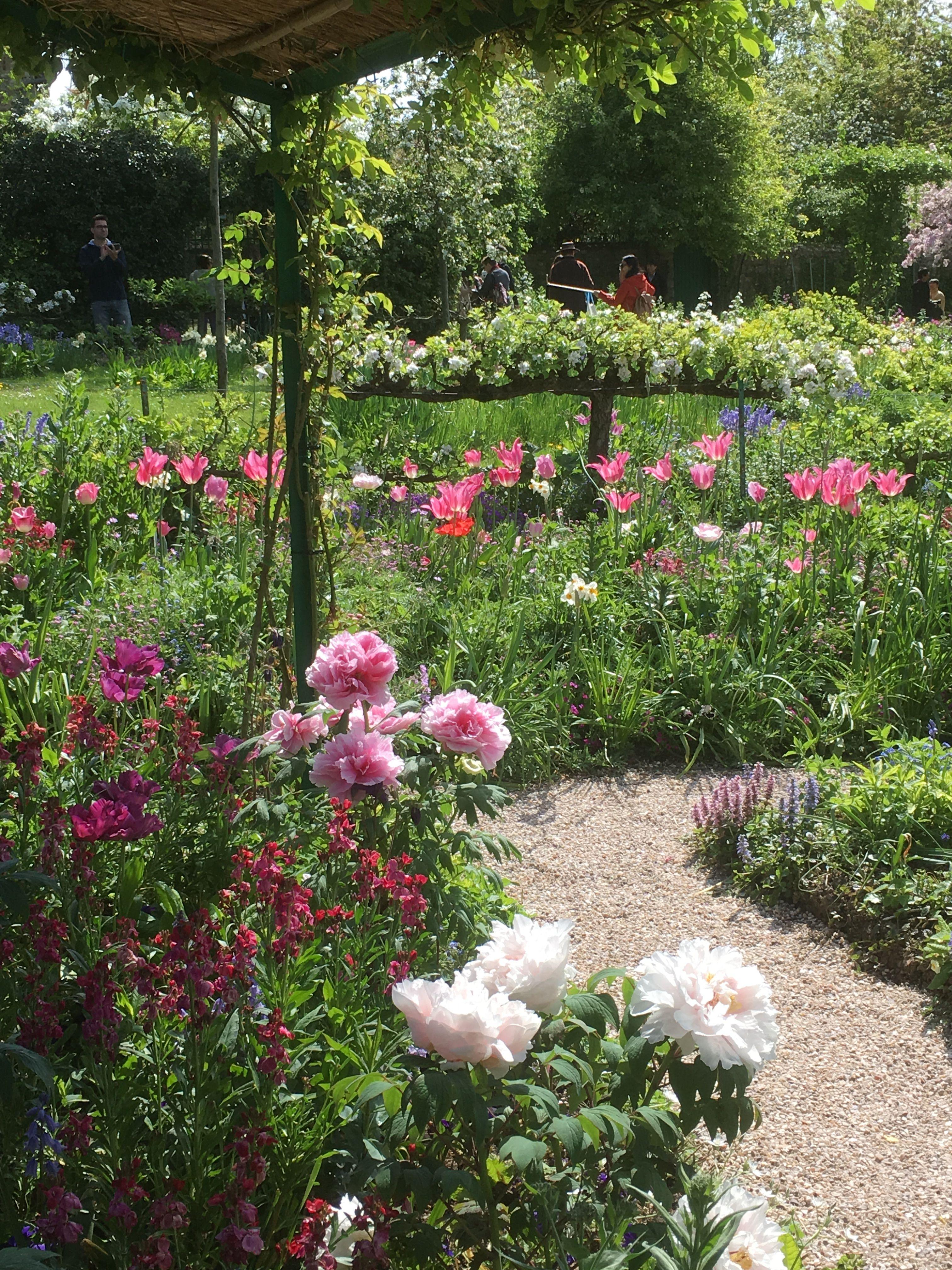 Joli Jardin. Allée De Jardin | Beautiful Gardens, Gorgeous ... tout Allee De Jardin