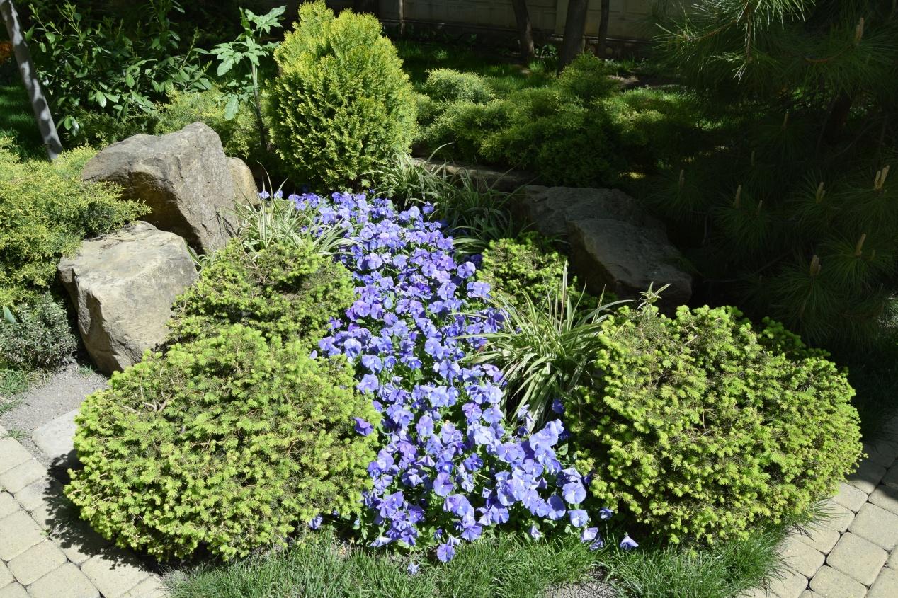 Un Jardin En Pente : Agencer Et Aménager Un Jardin En Pente concernant Amanagement Jardin En Pente