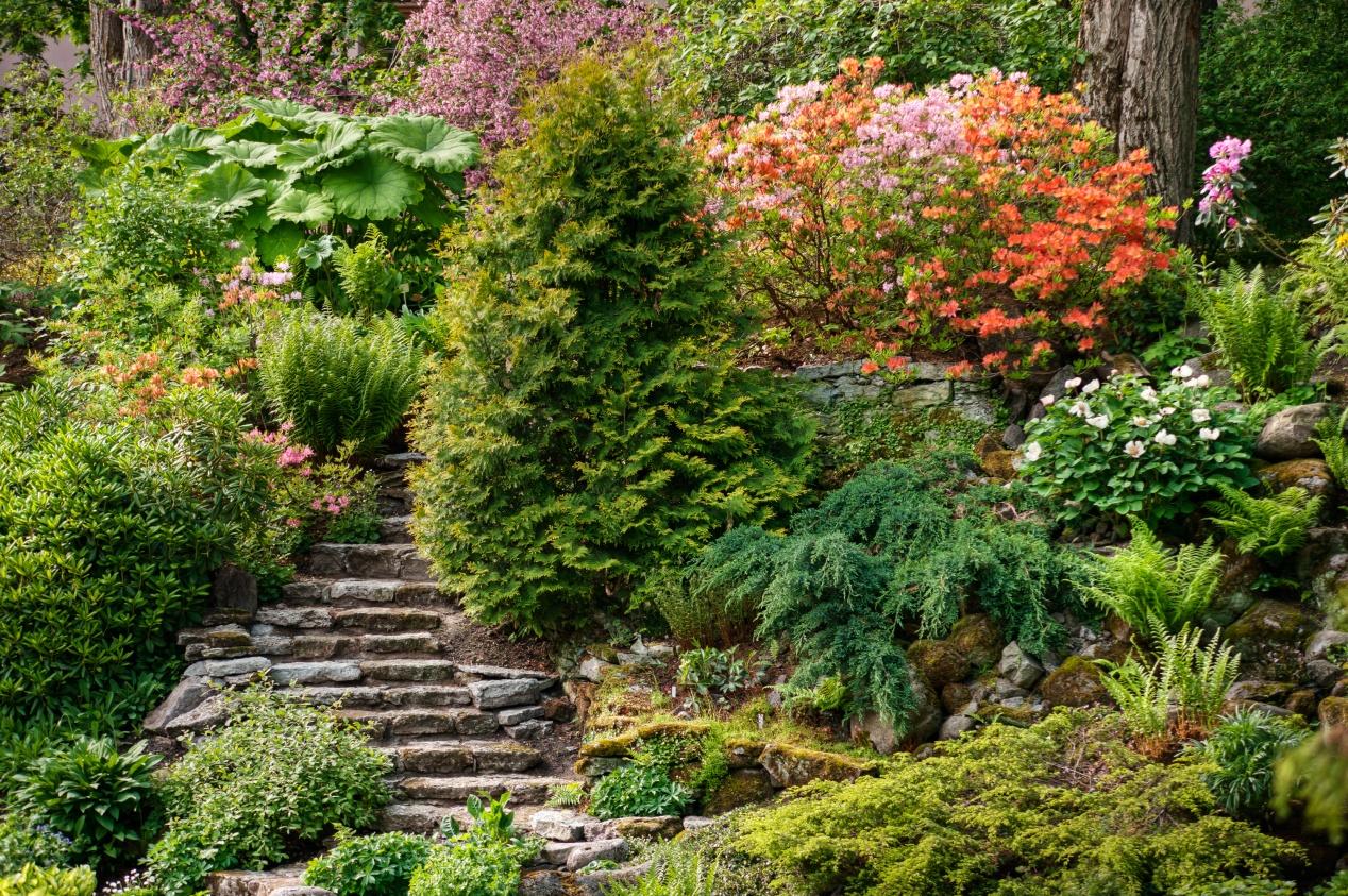 Un Jardin En Pente : Agencer Et Aménager Un Jardin En Pente intérieur Amanagement Jardin En Pente